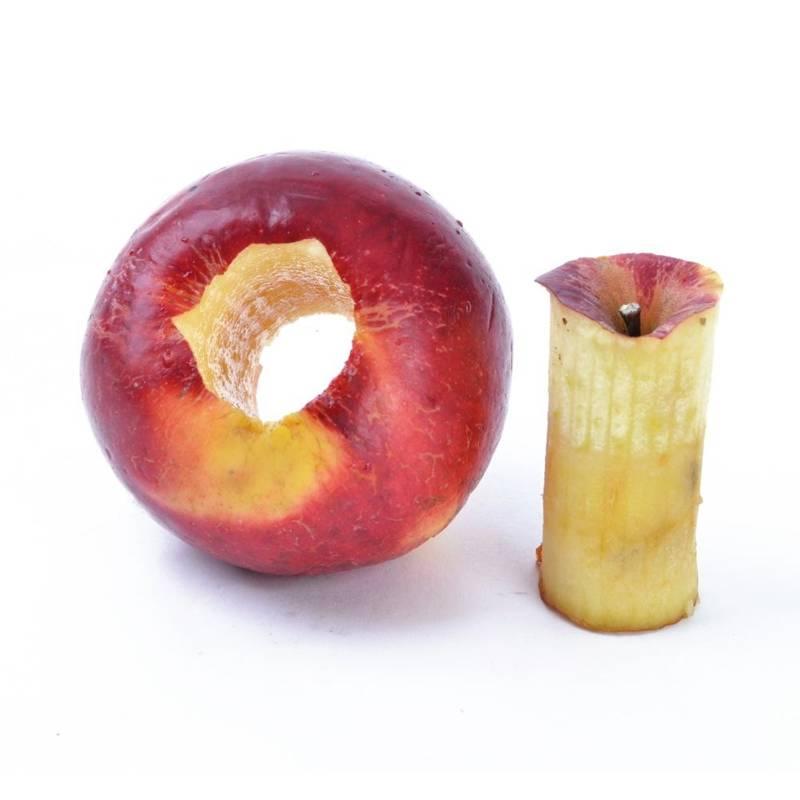 ORION Stoner / cutter for apples, pears