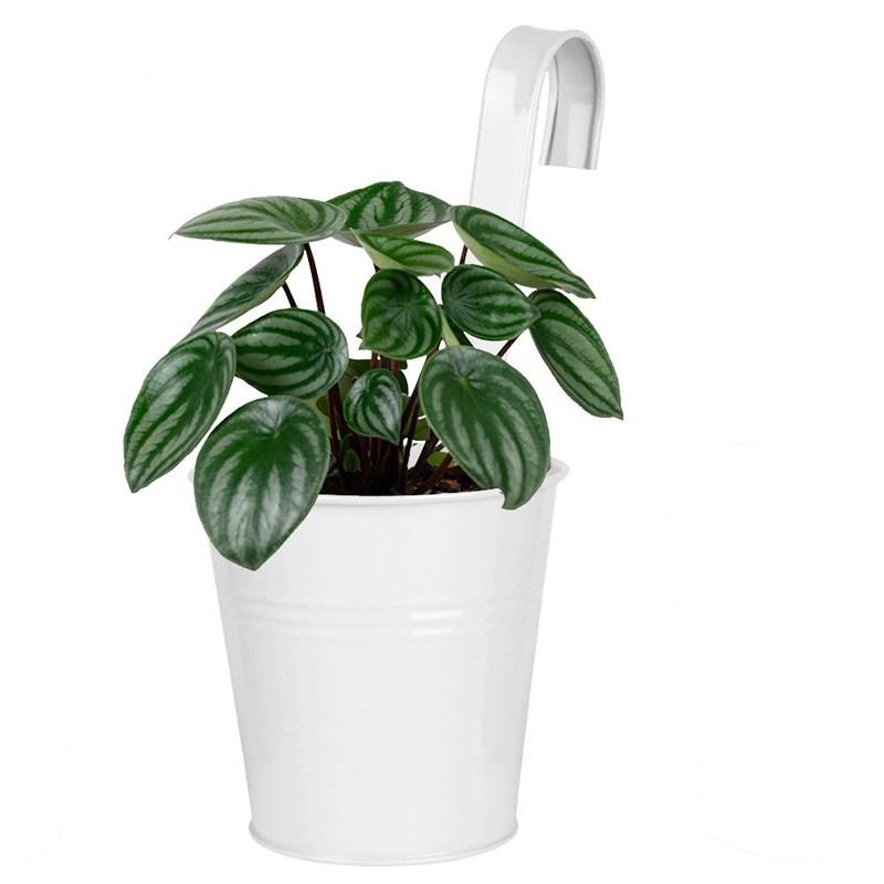 ORION Pflanzentopf BLUMENTOPFHALTER Hängetopf Blumenkübel für Balkon Terrasse in WEISS
